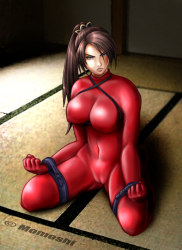 SC2_Taki_in_her_red_catsuit_by_SemeMomoshiDesu.png